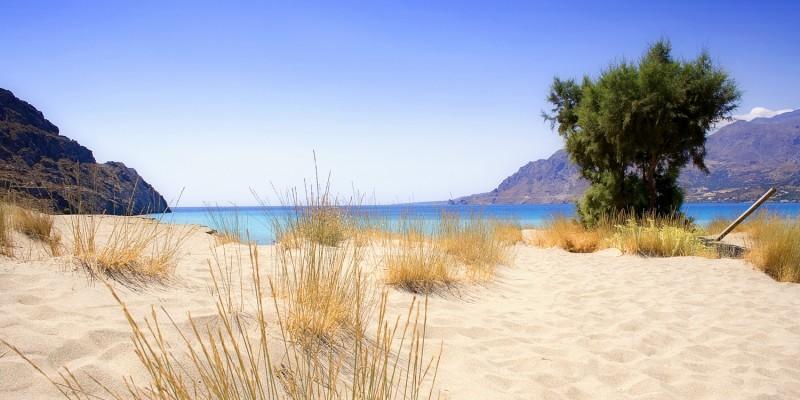 Urlaub in den Dünen
